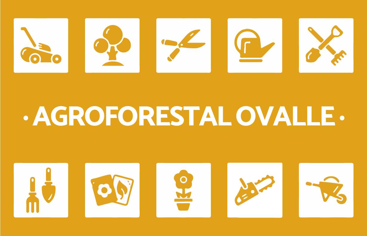 Agroforestal ovalle